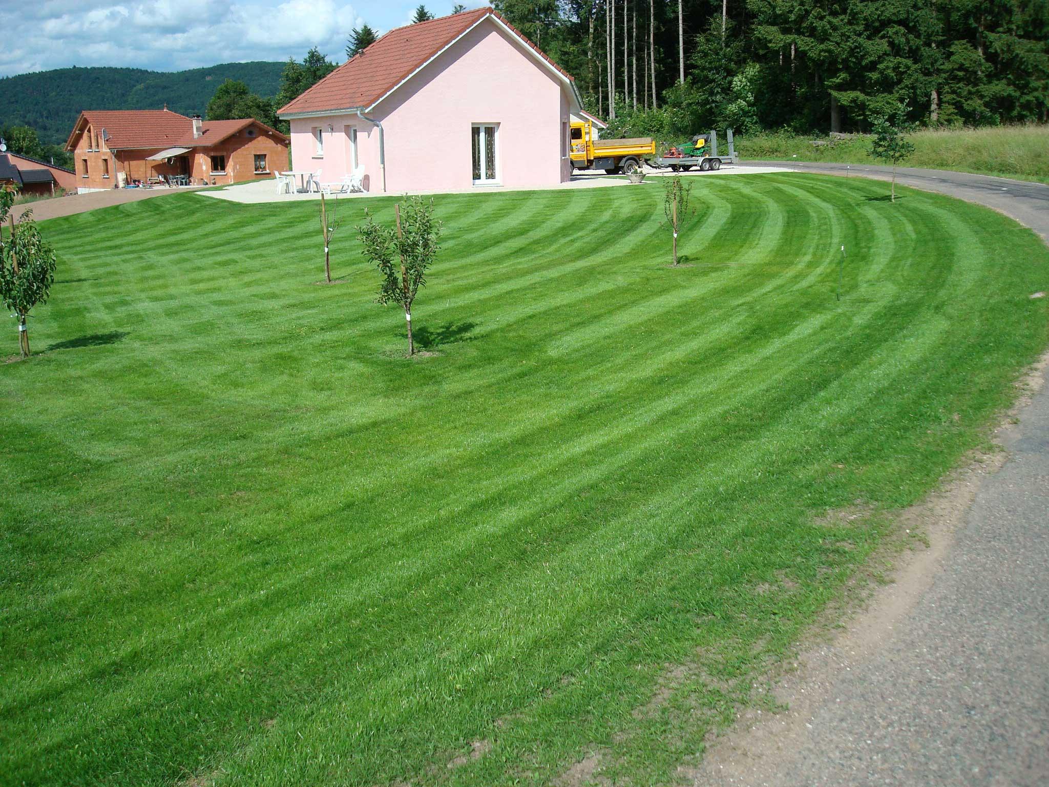 Entretien du gazon vue sur jardin gazon en rouleaux for Entretien jardin 13