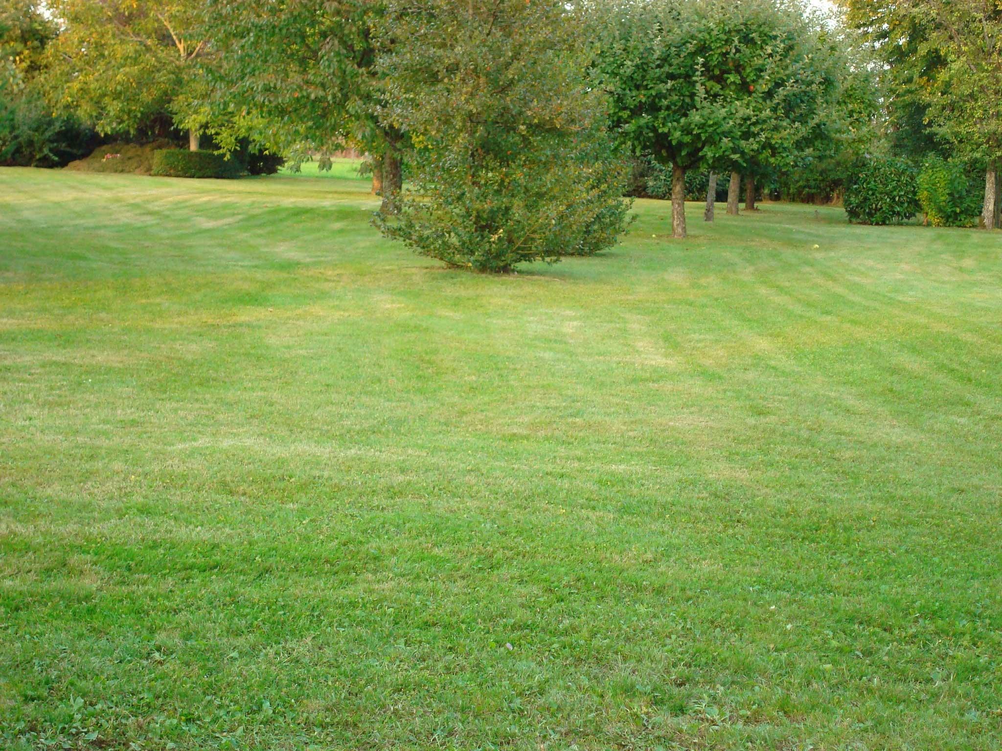 Nos r alisations paysagiste bcs paysage for Paysage de jardin